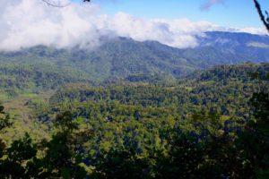 Mirador sendero quetzales | Panama