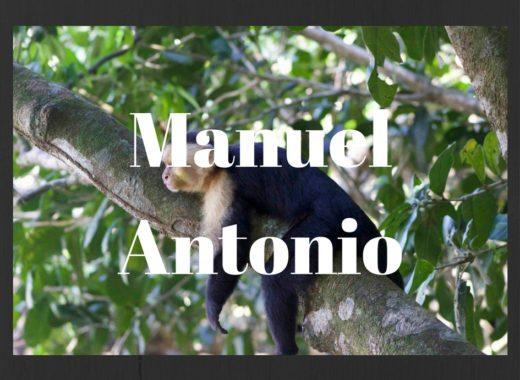 Manuel Antonio | Les Aventures de Floriane
