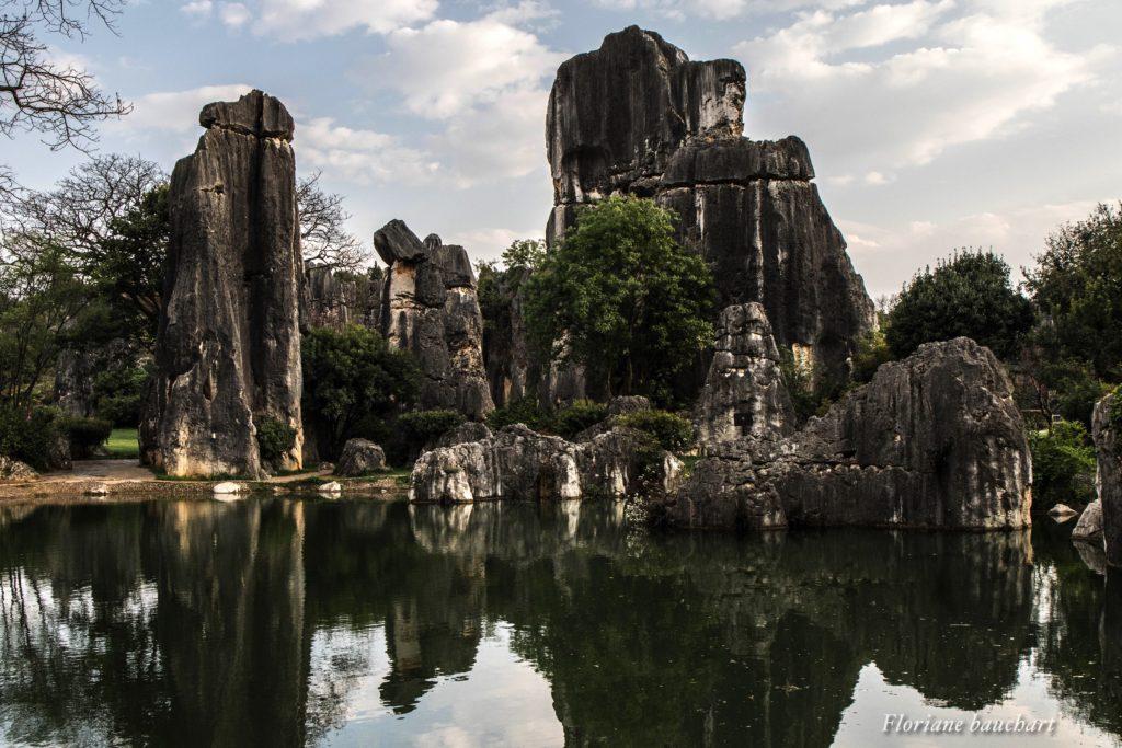 Forêt de shilin avec bassin