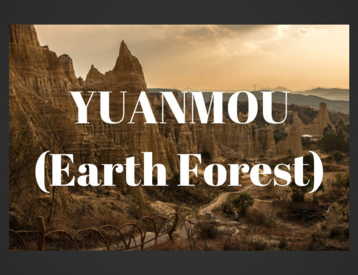 Yuanmou Earth Forest